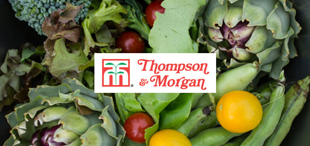 Connect with Thompson & Morgan Uk. You are viewing current jayslowlemangbud.ga coupons and discount promotions for November For more about this website, and its current promotions connect with them on Twitter @thompsonmorgan, or Facebook, or Pinterest, or Google+.